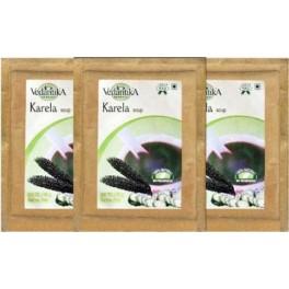 Vedantika Herbals Soup - Karela (tri Pack)