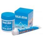 Kailash Jeevan Ayurvedic Cream 20g