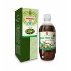 Axiom Bhringraj Juice 500ml